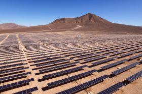 ¿Qué es la carbono neutralidad? Tips para entenderla