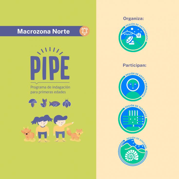 FEED_PIPE-MACROZONA (1) (2)