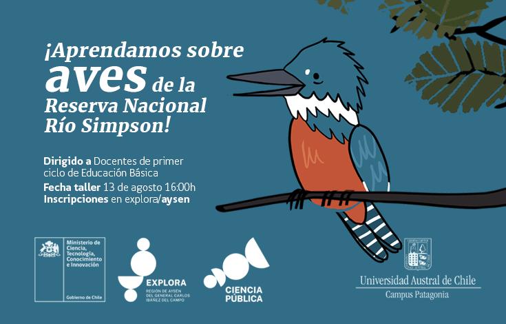 bannerweb-taller-aves