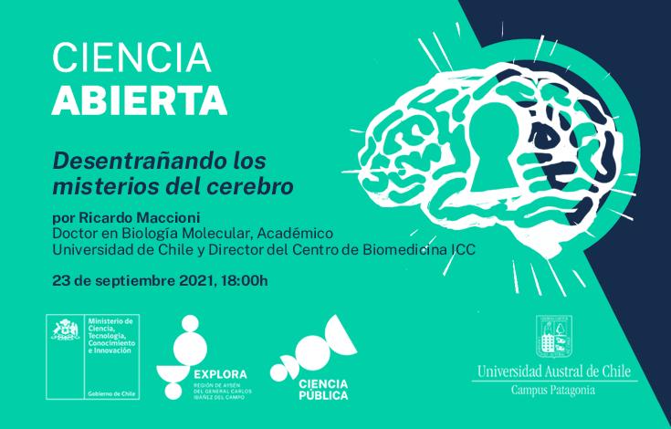 bannerweb-cerebro