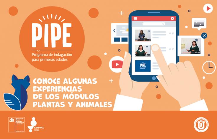 Banner Web_Experiencias_PIPE_Mesa de trabajo 1