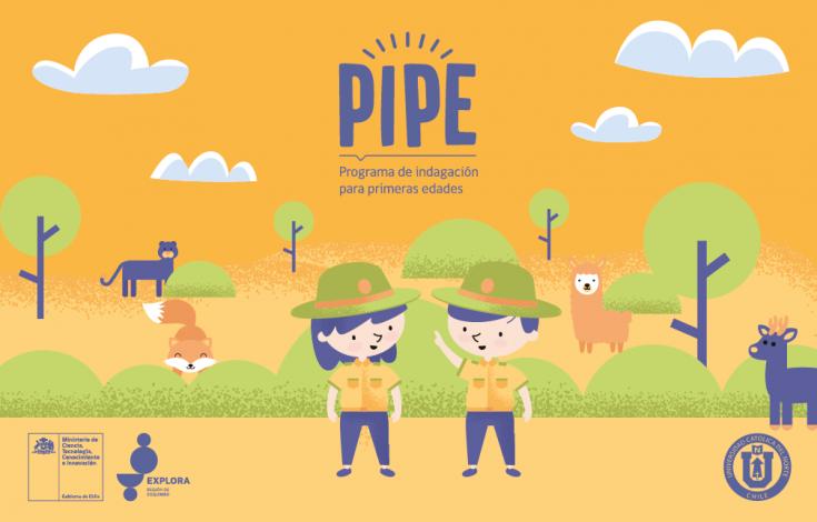 Acta adjudicación PIPE 2021