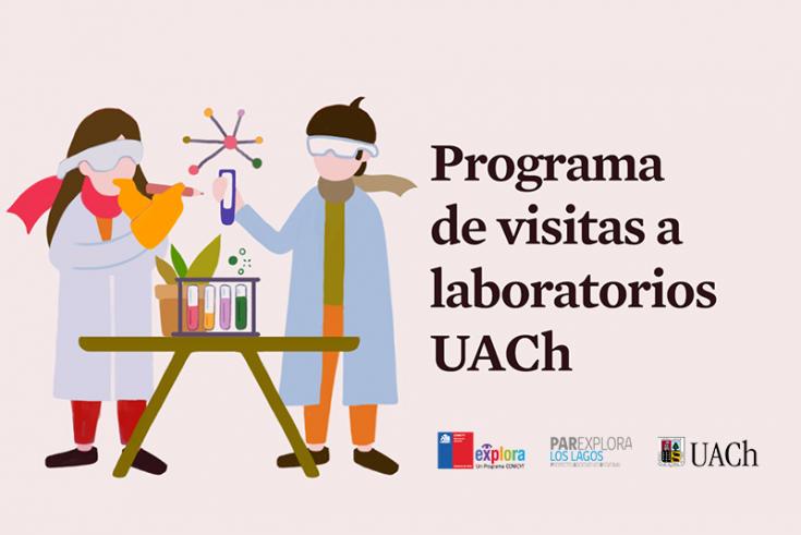 laboratorios(2)
