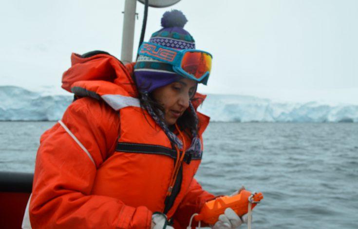 Créditos investigadora Lorena Rebolledo en Bahía South_Antártica - copia