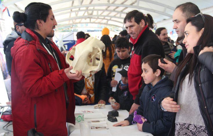 Exposición Pilauco Festival 2019