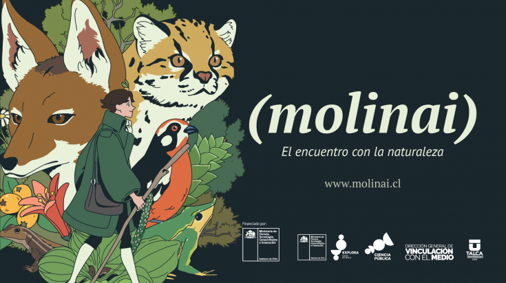 MOLINAI-LIBRO-BANER