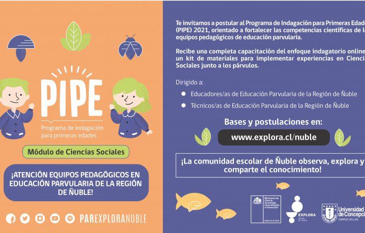 Banner web pipe convocatoria3-03