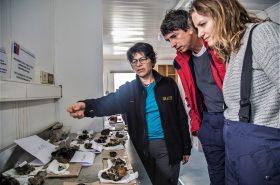 Seminario virtual abordará la participación de las mujeres en la ciencia antártica