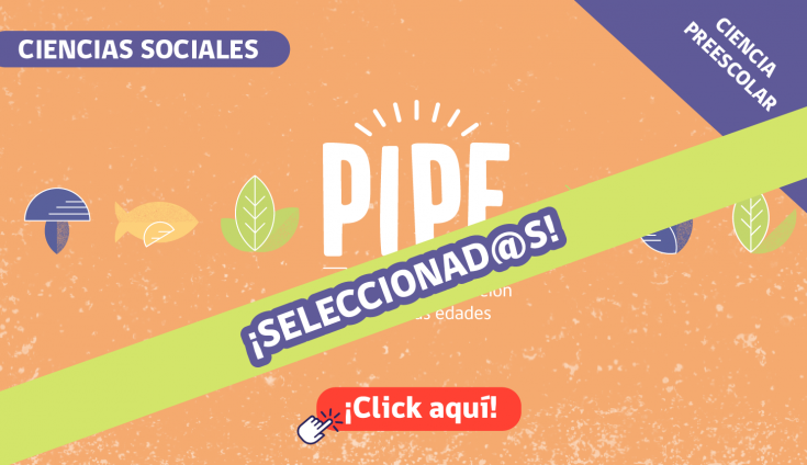 Banner_Pequeño_PIPE_SELECCIONADOS