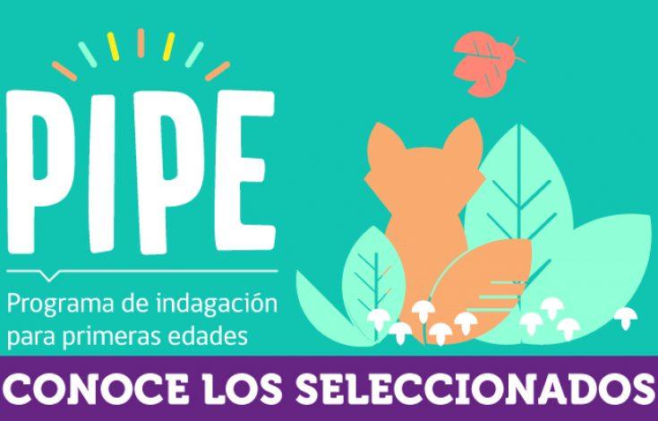 Banner-web-PIPE-2020-SELECCIONADOS