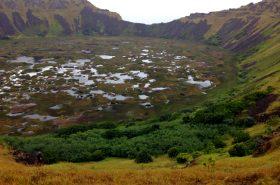 Reflorecer Isla de Pascua