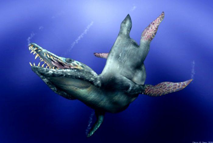pliosaurio-