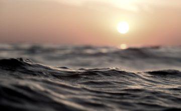 Crisis Climática: Océanos En Riesgo